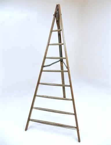 Fruit Picking Ladder